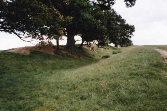 Offas Dyke 3